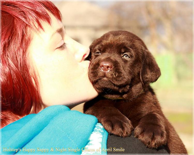 puppies_sappy_lala30